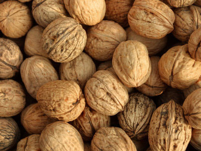 walnuts_Foods_You_Must_Eat_
