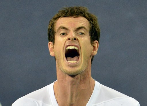 Andy Murray: now world number 2