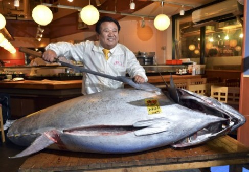 The $1.8m tuna: eating it can prolong life, according to new study