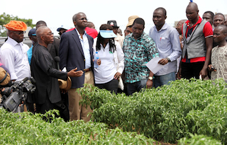 Lawal, first left, with Fashola, 3rd left on an inspection of Agric project in the state