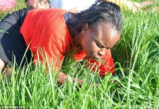 One of the chrch members eating grass