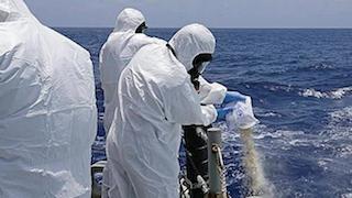 Australian naval officers destroying cannabis seized earlier