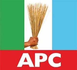 APC Logo 3