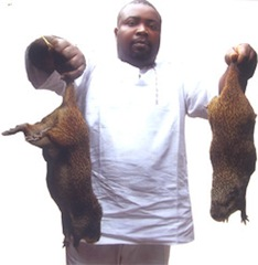 arinze and two grasscutters