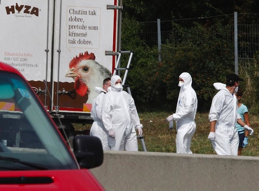 Forensic officers work at a truck found to contain a large number of dead migrants on a motorway near Neusiedl am See, Austria, on August 27, 2015 (AFP Photo/Dieter Nagl )