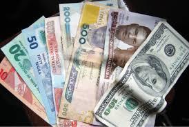 naira note