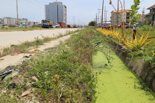 Lekki Phase One drainage taken over by weed Photo: Idowu Ogunleye