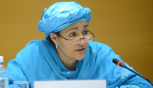 Amina Mohammed, Minister of the Environment