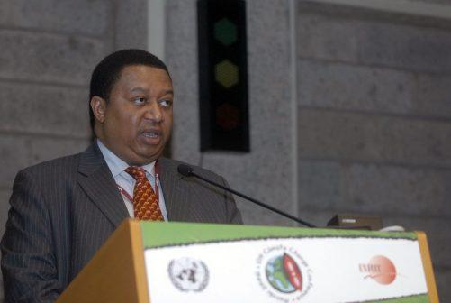 Mohammed Barkindo, ex NNPC Managing Director