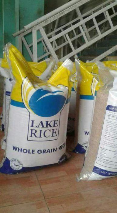 Lake Rice 1