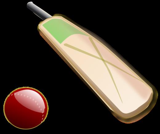 cricket-150560_960_720