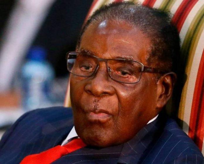 Robert-Mugabe-1-696×558