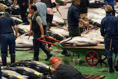 World's largest fish market