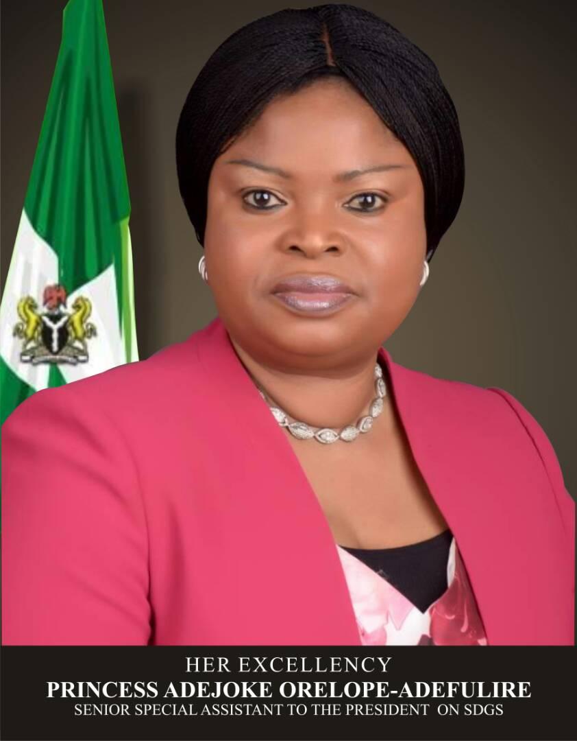 Princess Adejoke Orelope-Adefulire, SSAP-SDGs (13)