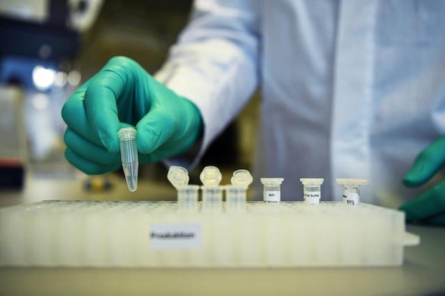 vaccine for coronavirus still in the making