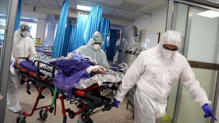 coronavirus (Covid-19) deaths