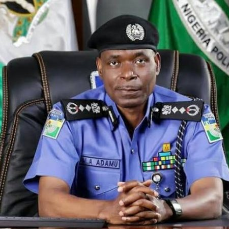 IGP Mohammed Adamu sends detectives to Benue to probe attack on Samuel Ortom