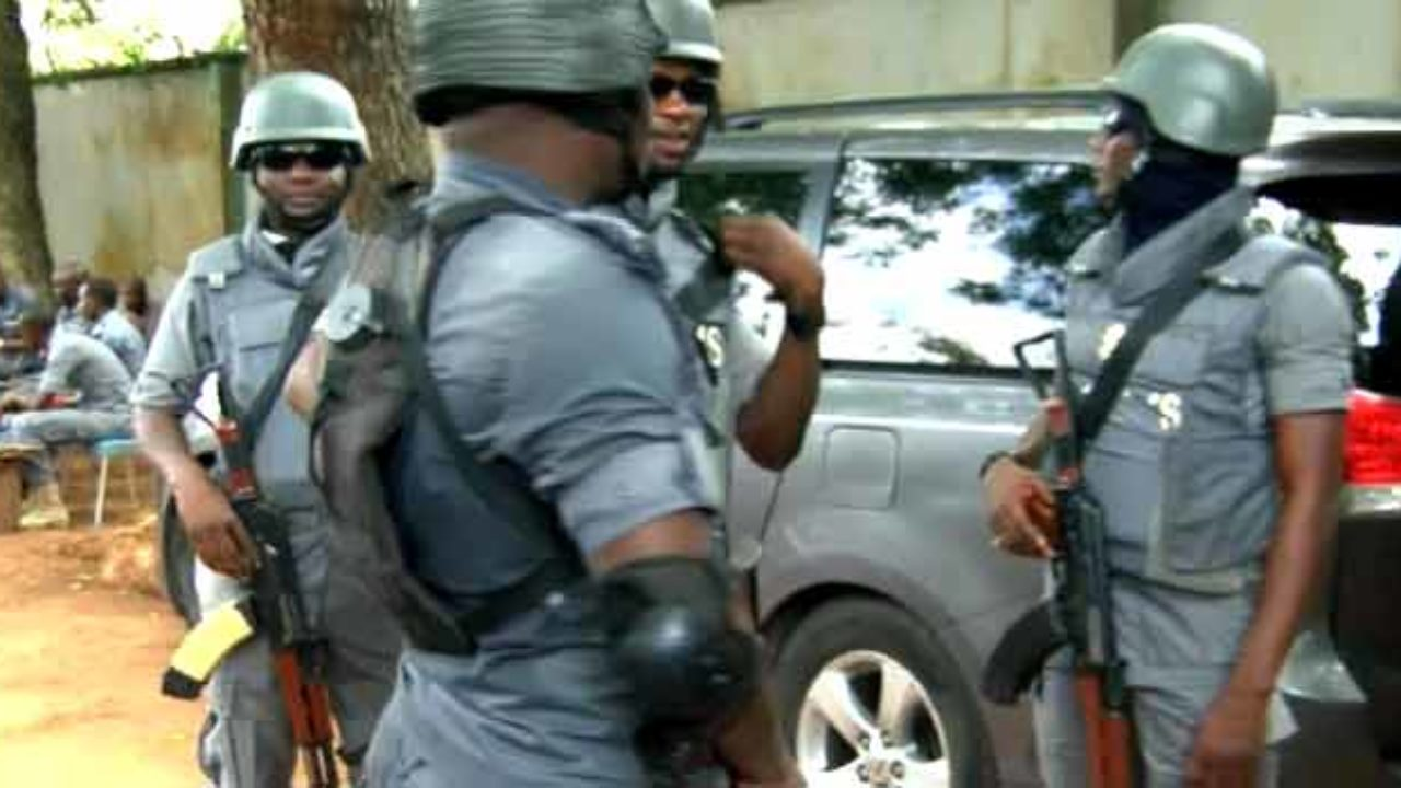 Joint border patrol at Nigeria's border points