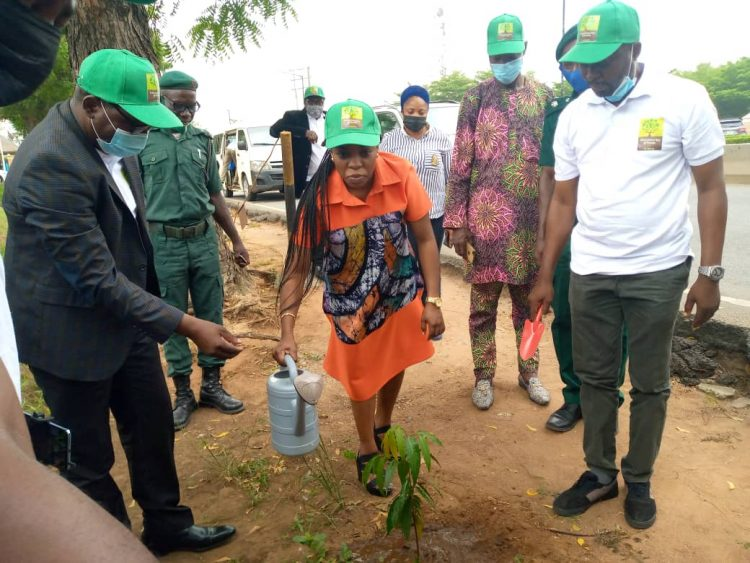Olusanya planting a tree