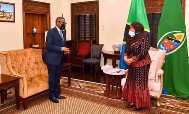 Aliko Dangote meets President Samia Suluhu Hassan of Tanzania