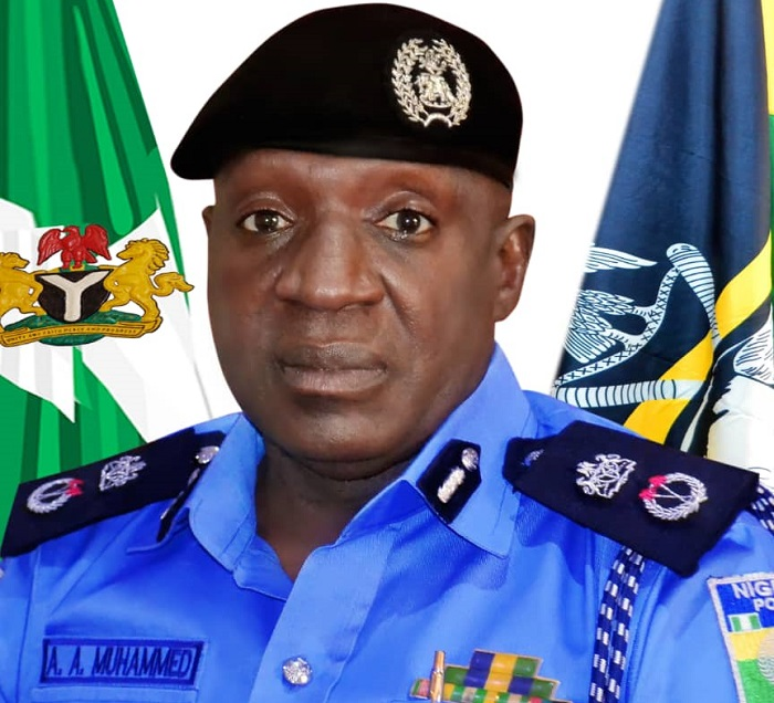 Commissioner-of-Police-Delta-State-Command-CP-Ari-Mohammed-Ali