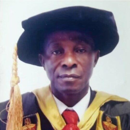 Professor Enyinna Okpara