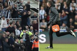 Medical emergency in the stands during Newcastle, Tottenham match